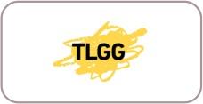 Versicherungsagenten - TLGG